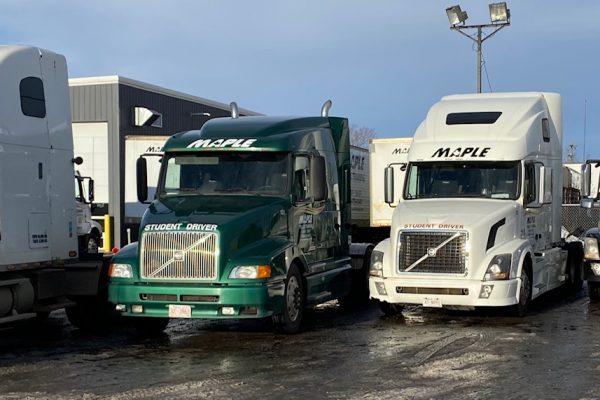 maple truck