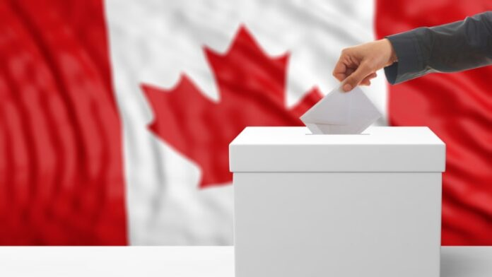 Know your Ward 5 City Councillor Candidate